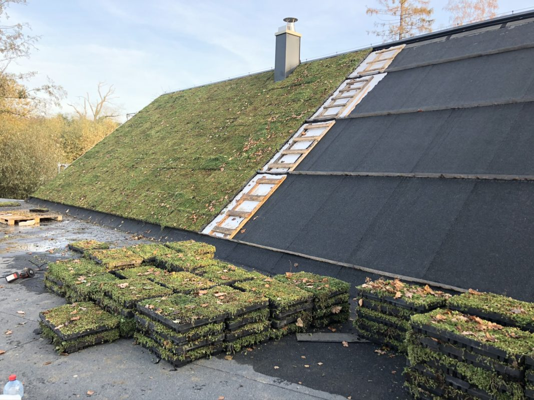 Pokládka zelené střechy je jednoduchá. Zdroj: ecosedum.cz