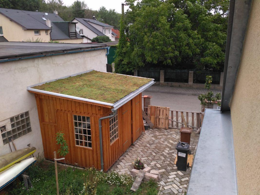 Starou pergolu nebo přístřešek oživíte nejen novým nátěrem, ale také přírodní zelenou střechou. Zdroj: ecosedum.cz