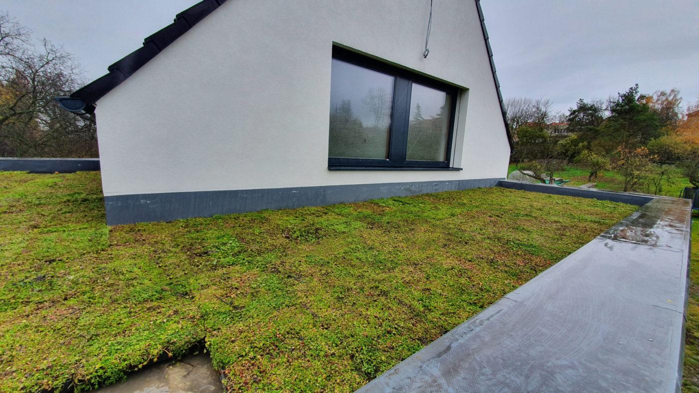 Zelená střecha – kousek přírody ve městě